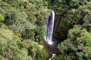 1500652172 b2f064d55b n - Amazzonia riconosciuta una delle sette meraviglie del mondo