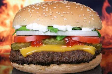hamburger dieta