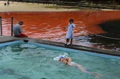 acque si tingono di rosso sangue
