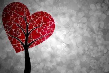 amore 363x242 - Ritrovare l'amore...per se stessi