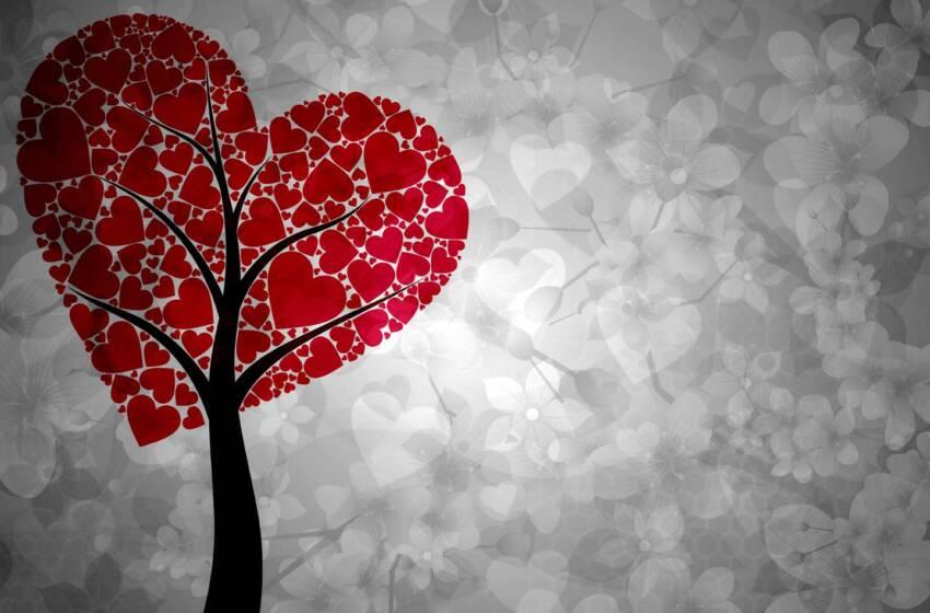 Ritrovare l'amore…per se stessi