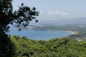 Parco naturale della Maremma 364x242 - Agriturismi in Toscana: l'ideale per degustare la cucina tipica