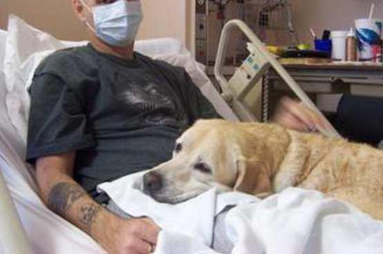 Animali domestici in ospedalein Emilia Romagna si può