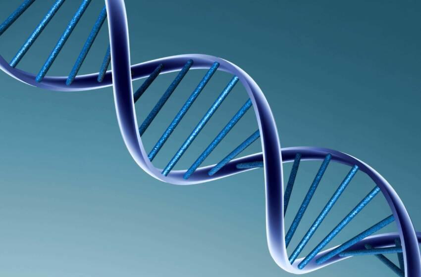 Trisomia 18 o Sindrome di Edwards: una grave anomalia genetica