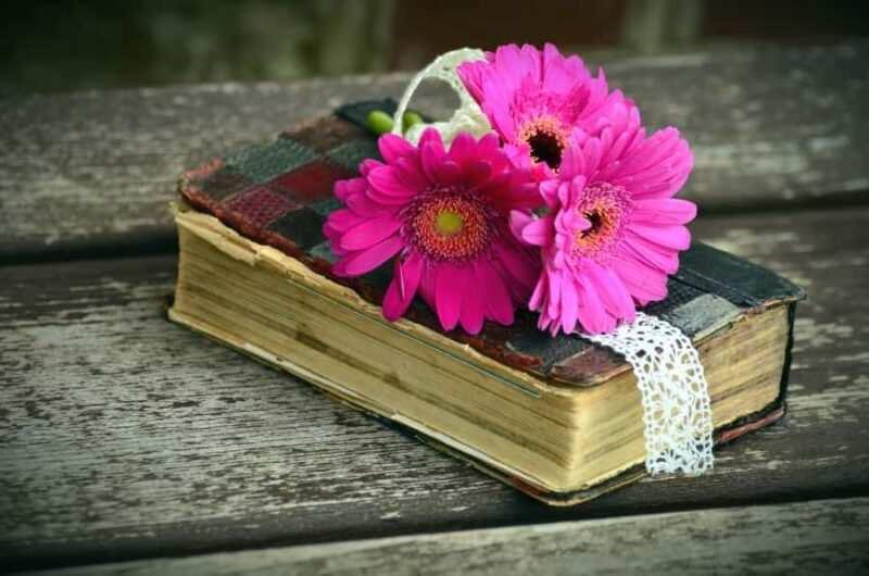 libro e fiori 800x530 - Al diavolo piace dolce un libro di Lauren Weisberger, La Recensione