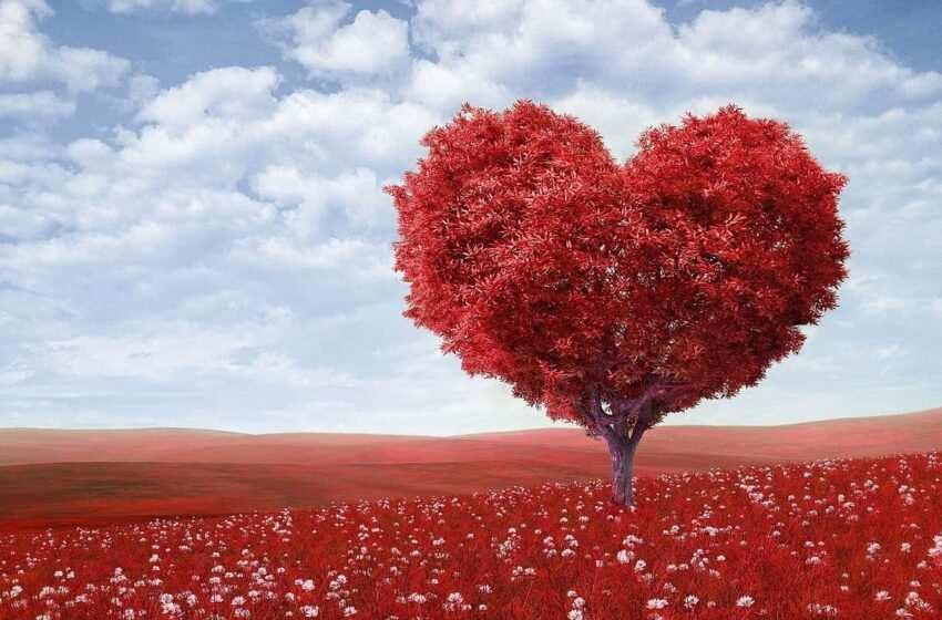 San Valentino nel mondo Come si festeggia?