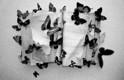 diane arbus 4 - Diane Arbus di Patricia Bosworth - La vita di un artista incompresa