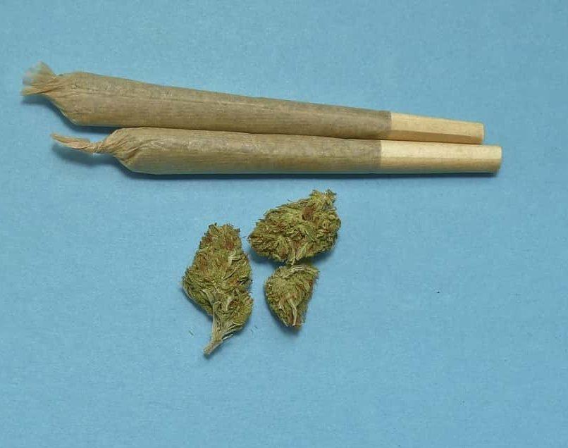 marijuana e1575846189838 - Cannabis: fumarla può danneggiare il cervello. Nuovo studio