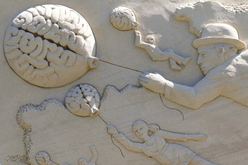 cervello differenze uomo donna 800x533 - Il cervello di lui e di lei: le differenze fra uomo e donna