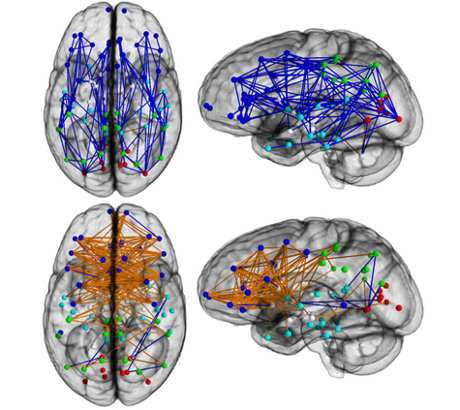 il cervello di lui e di lei - Il cervello di lui e di lei: le differenze fra uomo e donna