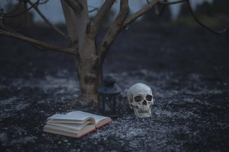 Halloween libri horror 800x533 - Halloween con Dickens e Bradbury, il lato spettrale della letteratura