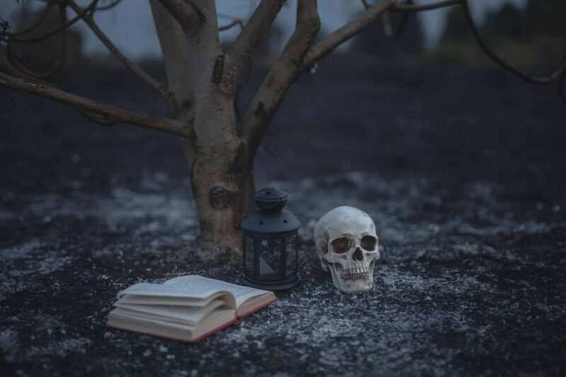 Halloween libri horror scaled 800x533 - Cosa fare ad Halloween da soli o in compagnia