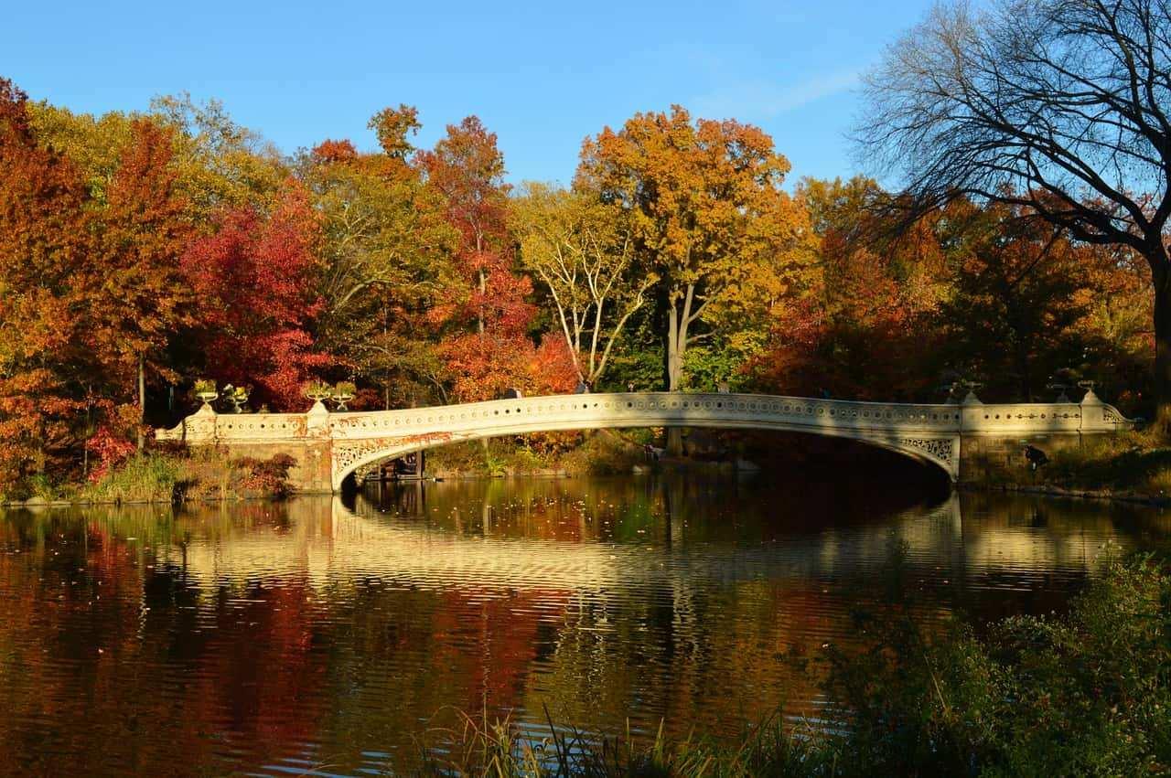 cosa fare in autunno a new york 4 - Cosa fare in autunno a New York? il top delle vacanze