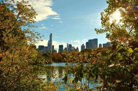 Cosa fare in autunno a New York