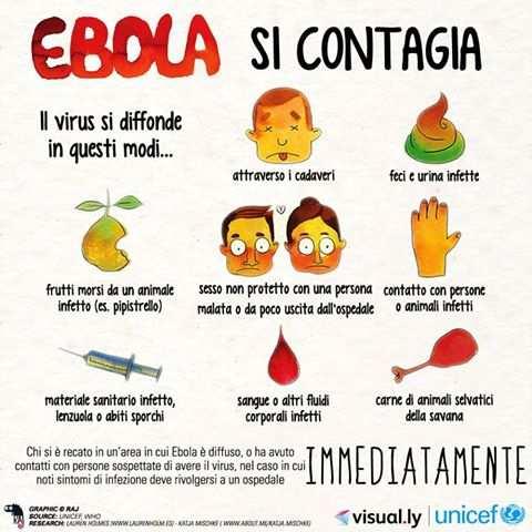 ebola 1 - Come si contrae il virus Ebola