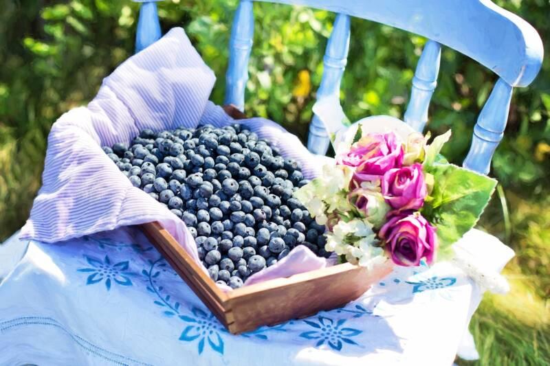 cestino di mirtilli 800x533 - Mirtillo: curiosità, proprietà benefiche e le migliori ricette di bellezza - rimedi naturali