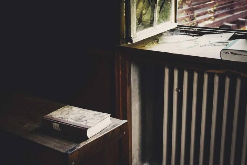 5 libri da leggere questo autunno e per halloween 800x533 - Il cuore selvatico del ginepro di Vanessa Roggeri, il libro, la recensione