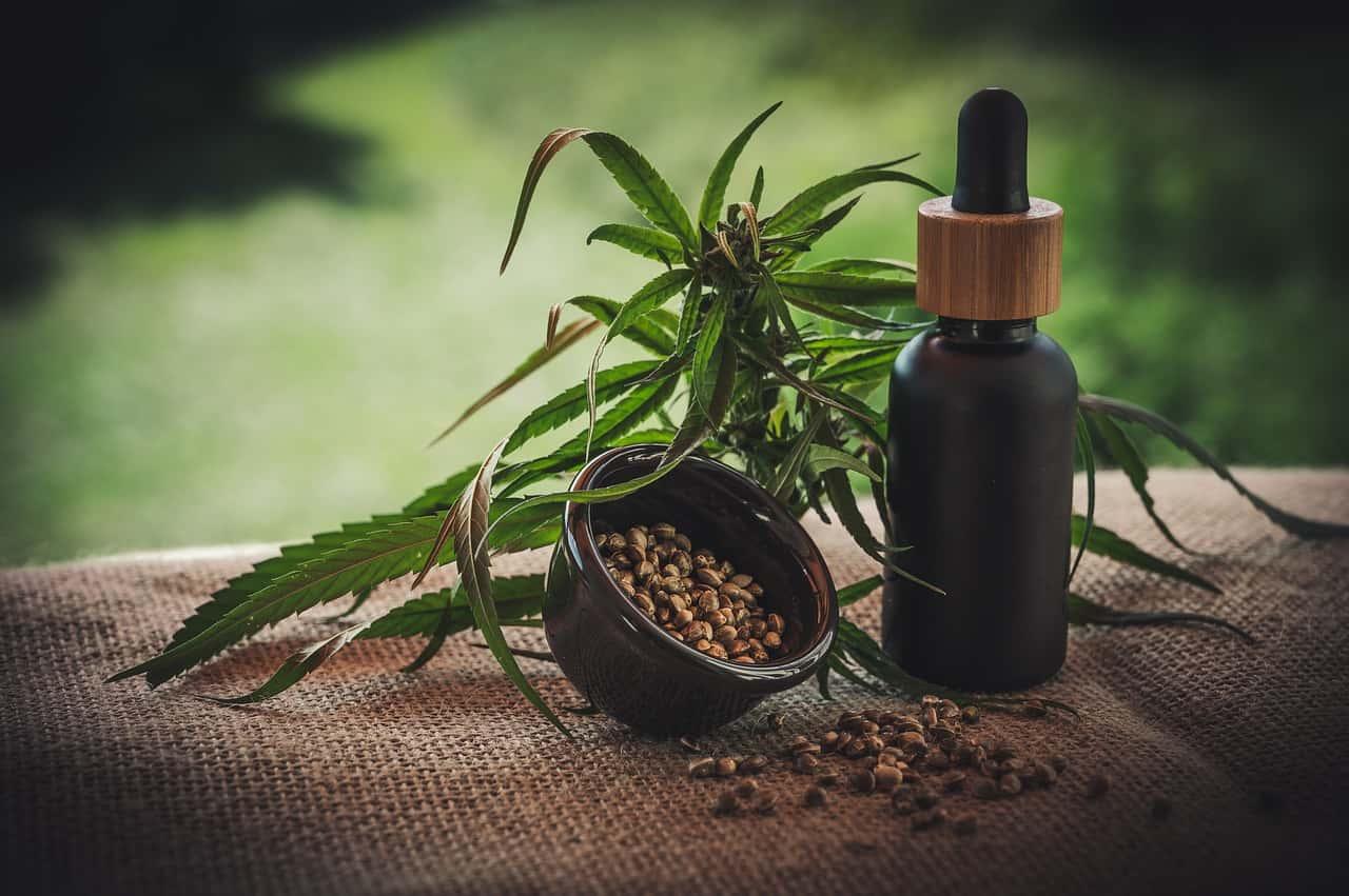 Concentrati ed Estratti di Cannabis - Cannabis light: ecco perché deve essere legalizzata