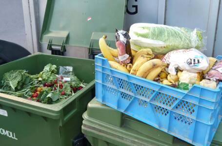 Frutta e ortaggi Freegan
