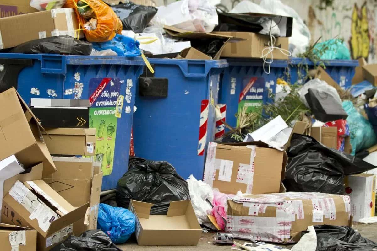 Freegan - Freegan: la nuova frontiera del dumpster diving