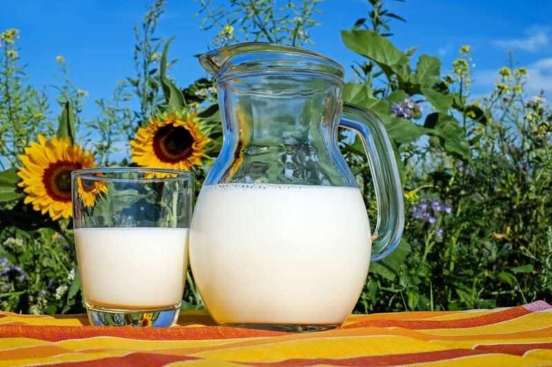 latte caraffa 800x533 - Il riciclo ai tempi della quarantena CoronaVirus Covid-19– parte 2