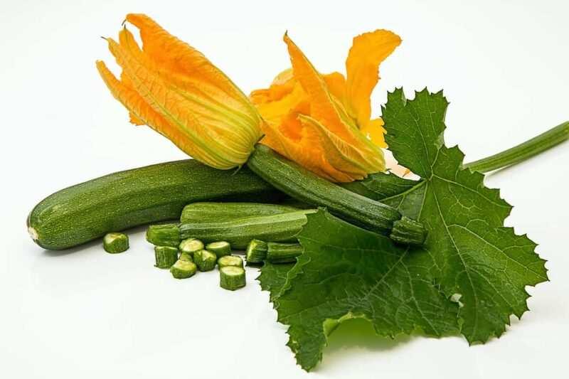 zucchini 800x533 - Creare un piccolo Orto in un terrazzo e quali ortaggi coltivare in quarantena Covid-19