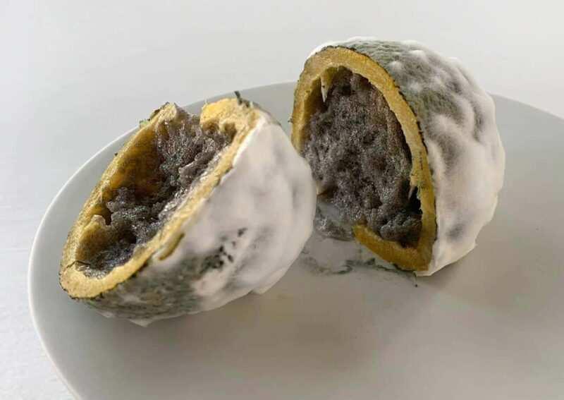 limoni con muffa dello Cheff stellato Terry Giacomello scaled 800x567 - Limone ammuffito un dessert rivoluzionario: orrori da gustare
