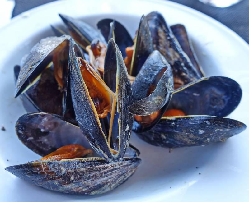 cozze cotte vapore 1 800x650 - Cozze chiuse, perchè non si mangiano: intossicazione da molluschi