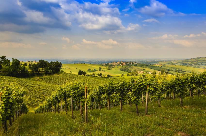 Andar per valli; la provincia di Piacenza un territorio da scoprire