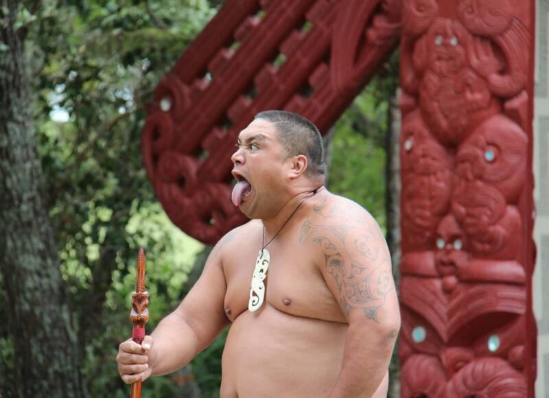 maori  800x580 - Tatuaggi maori significato e cultura, i migliori disegni per prenderne spunto