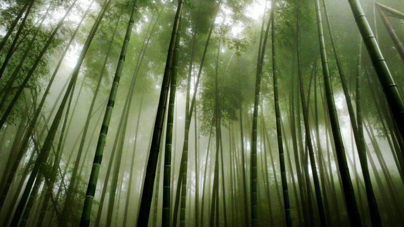 Hei Zhy Gou 800x450 - I luoghi più misteriosi del mondo - 10 curiosità per le vacanze