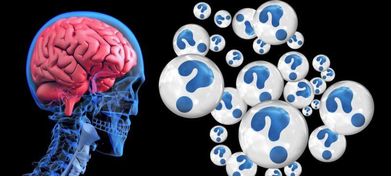 brain come migliorare la memoria 800x361 - Come migliorare la memoria - piccoli e facili esercizi