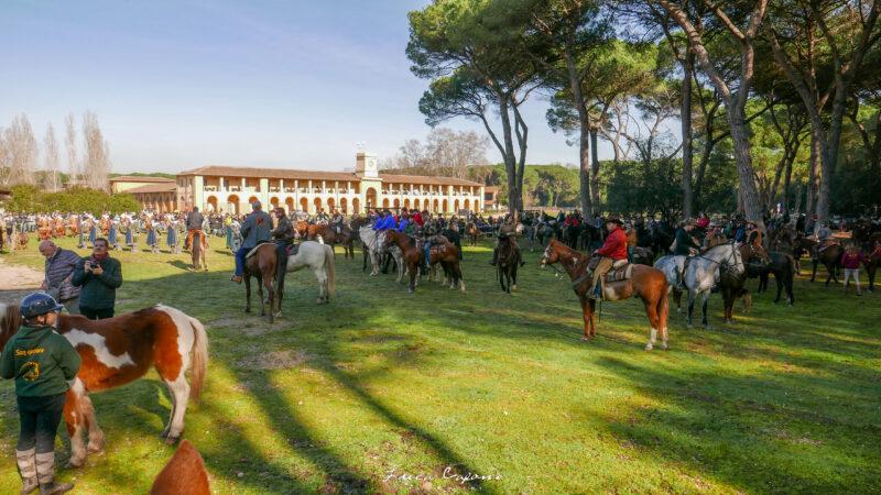 benedizione san rossore 800x450 - Cosa vedere in Toscana in autunno e in inverno