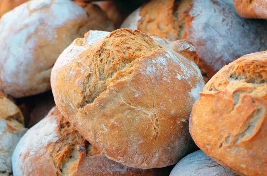 Tipi di pane italiani per regione