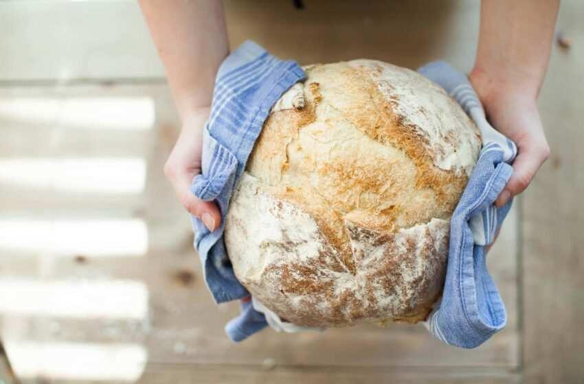 Tipologie di pane: quanti ne esistono, curiosità e differenze