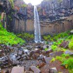 islanda skaftafell svartifoss naturaviaggi 150x150 - 20 curiosità sull'Islanda: popolazione, governo e stile di vita