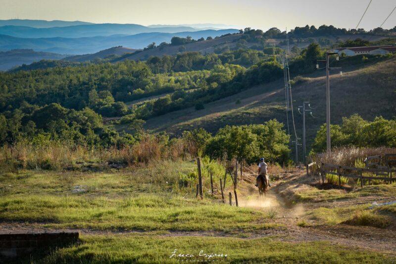Montemerano a cavallo 800x534 - Montemerano cosa vedere, guida per la visita