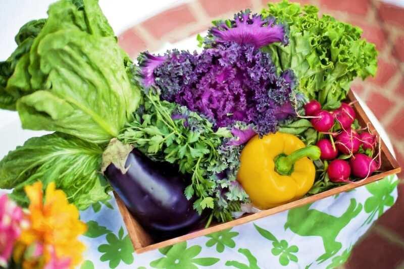 ortaggi e le verdure di stagione agosto 800x533 - Verdure di stagione: estate